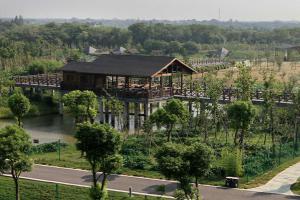 长兴中国扬子鳄村