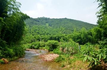 农家旁小溪