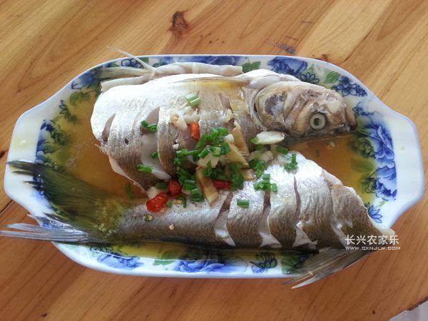长兴农家菜太湖白鱼